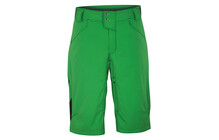Dakine 8 Track Men's Short kelly